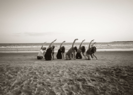 Wild Flow Yoga and Barre