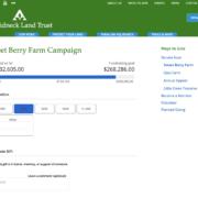 alt-donations